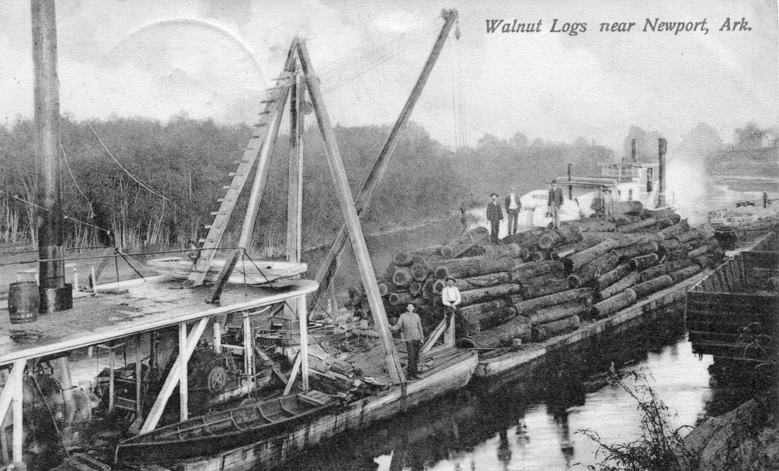 1880's – Walnut Logs on Barge