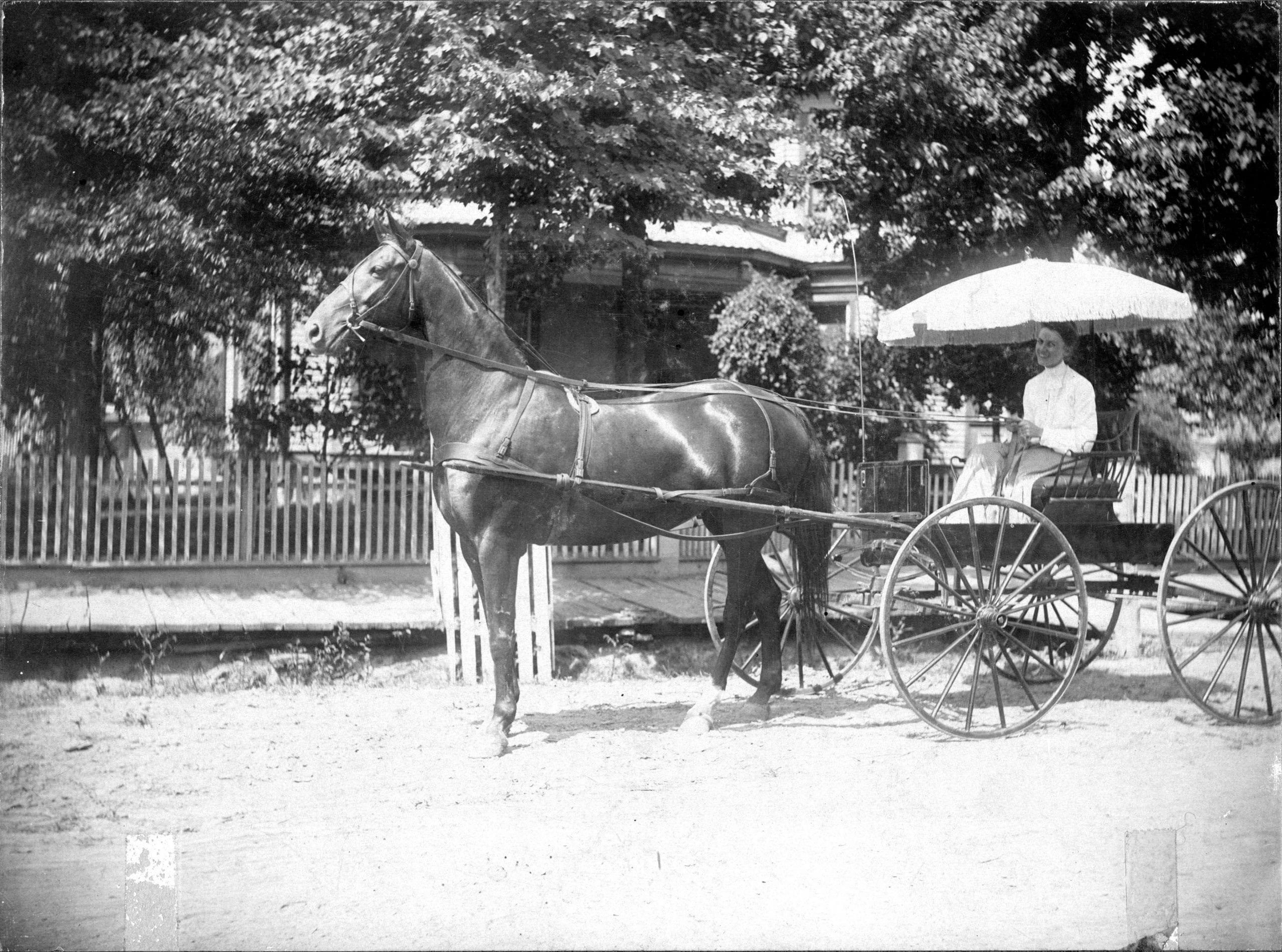 1900's – Lula Empie Van Dyke
