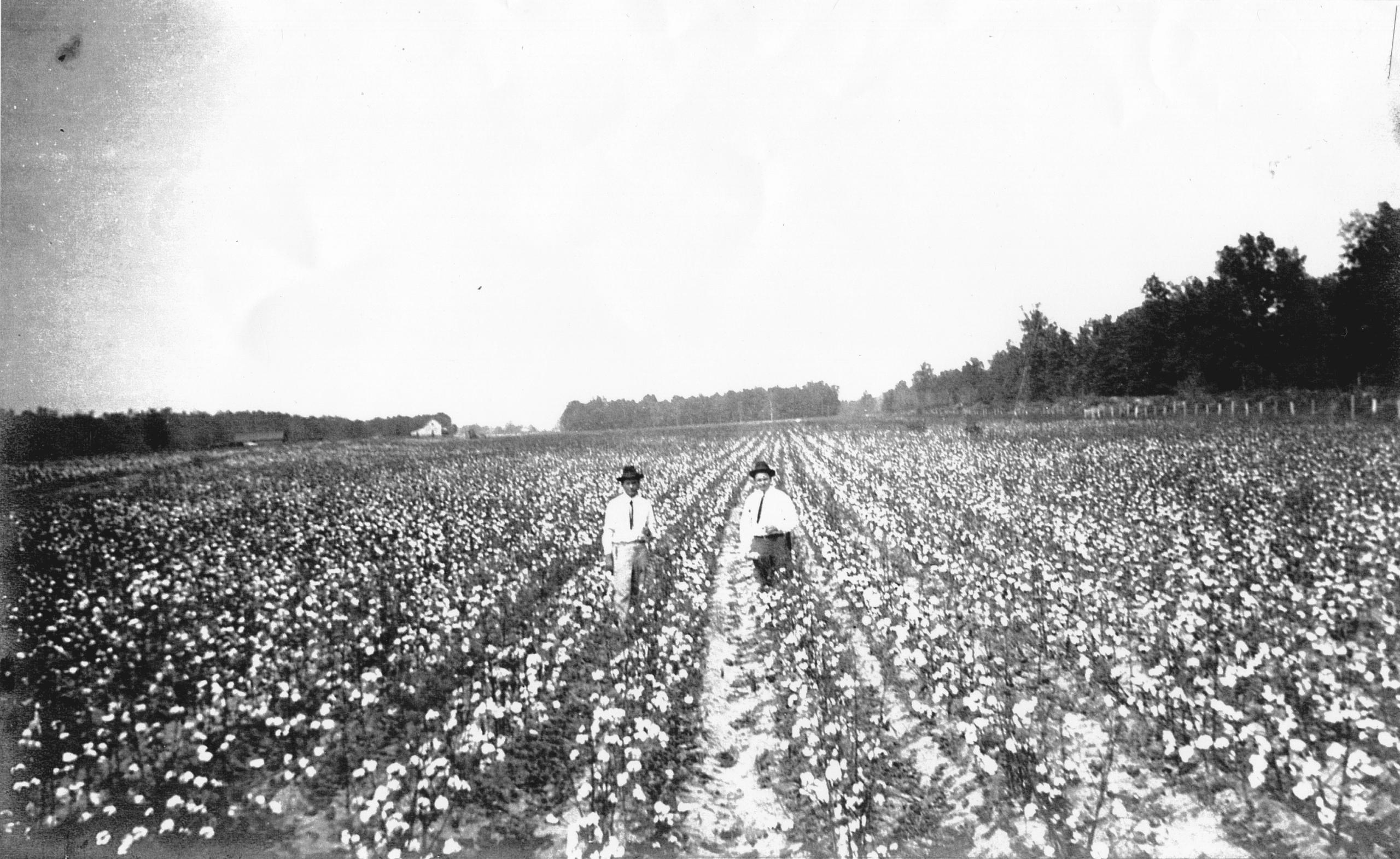 1908 – Ferdinand Tonney Farm in Swifton