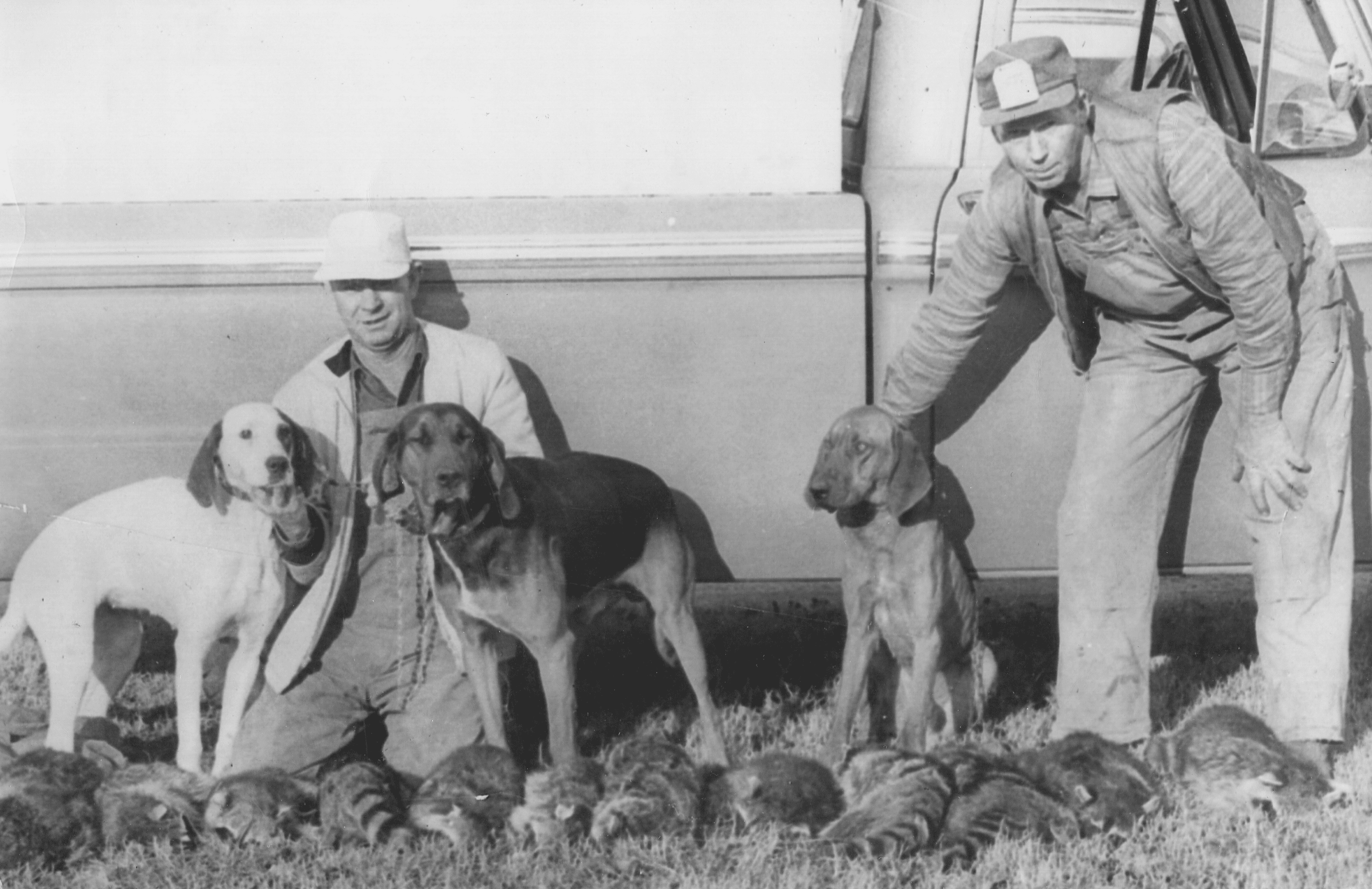 1960's – Swifton Coon Hunt